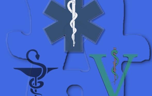 Nurses or Heroes?