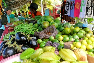 Hall declares agricultural development essential to the Virgin Islands' future